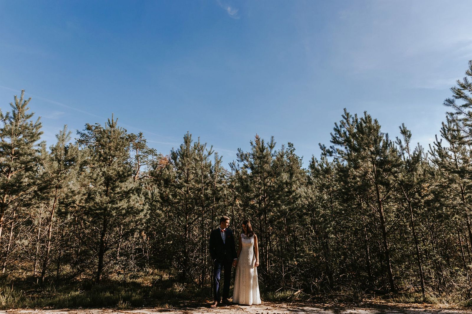 sesja ślubna w lesie w choinkach